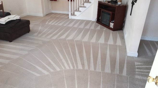 Stay Beautiful Program - Cleaned Carpet Image - The Carpet Doctor Inc.