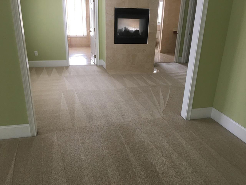 Carpet Cleaning - The Carpet Doctor Inc.