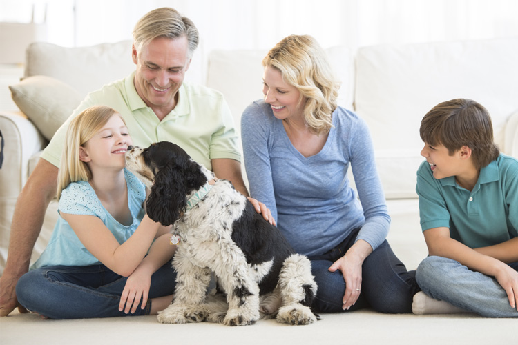 Family sitting on a clean carpet with their dog - The Carpet Doctor Inc.