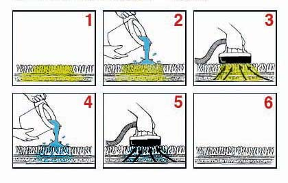 Urine Treatment Illustration - The Carpet Doctor Inc.